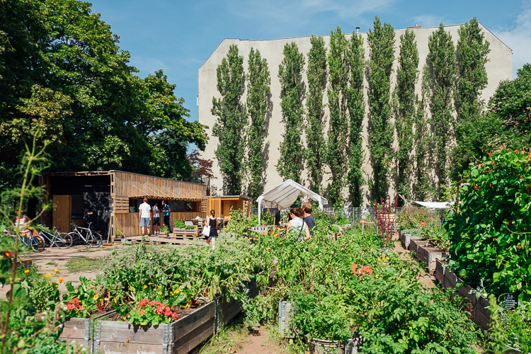 Himmelbeet – Urban garden in Wedding